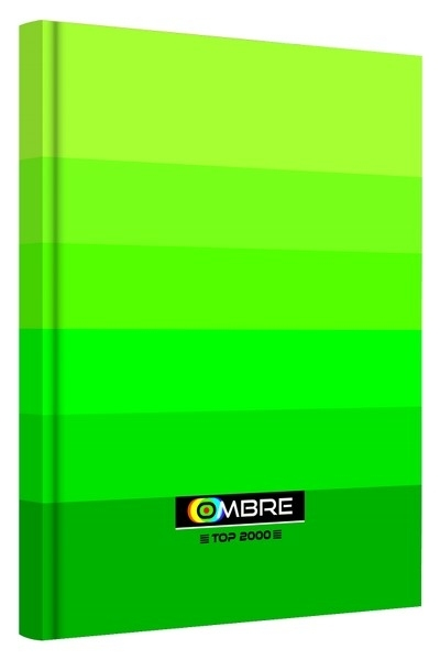 Brulion A4 96k kratka zielony Ombre